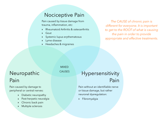 Three Circle Venn Diagram about Chronic Pain